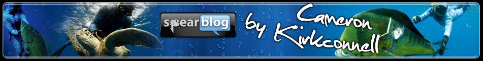 Spearblog Logo