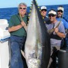 405 lb Yellowfin Tuna