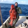 Spearfishing World Records: Photos simplified