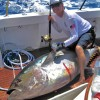 New WR Yellowfin Tuna