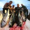 Tuna Trip complete