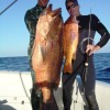 Pargo World Record Trip