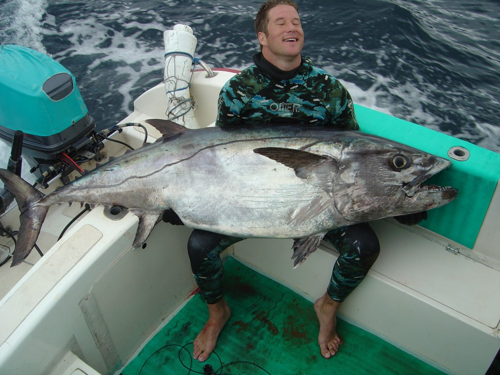 Dogtooth tuna world record 201 lbs spearblog for Is tuna fish good for dogs