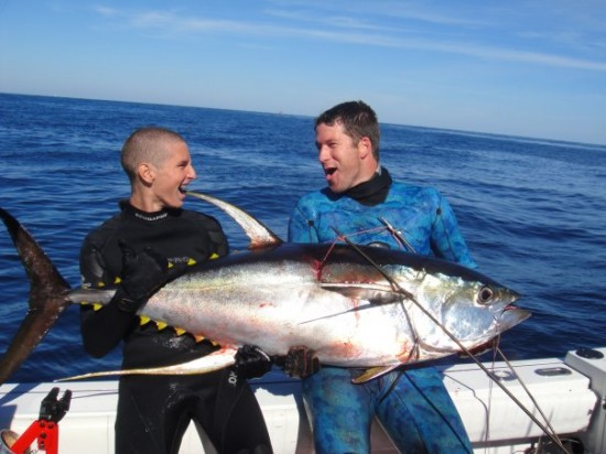 Video big yellowfin tuna and sharks spearblog for What does a tuna fish look like