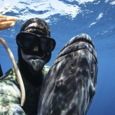 Black Grouper 77lbs Freediving Cameron Kirkconnell