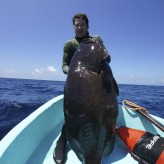 Giant Black Grouper Freediving Cameron Kirkconnell
