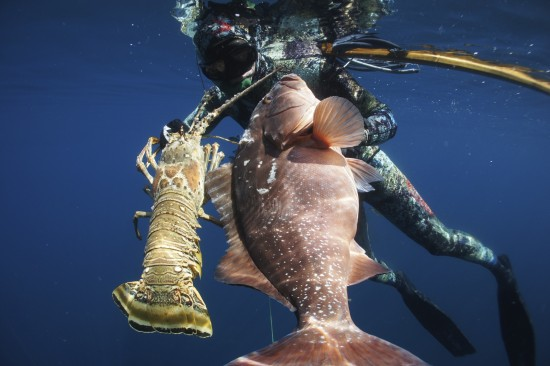 Video : Grouper and Giant Lobster on one dive | SpearBlog